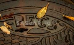 pecs-IMG_9063