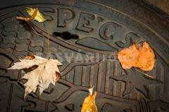 pecs-IMG_9129